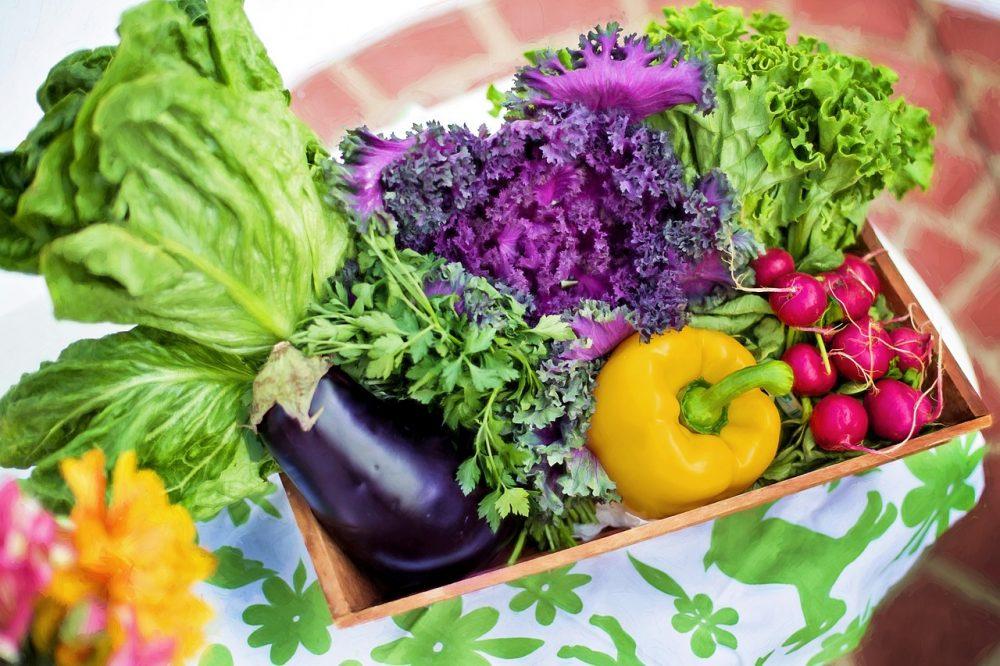 Kleurcodes – ons dieet analyseren door middel van de natuurlijke kleur van ons voedsel