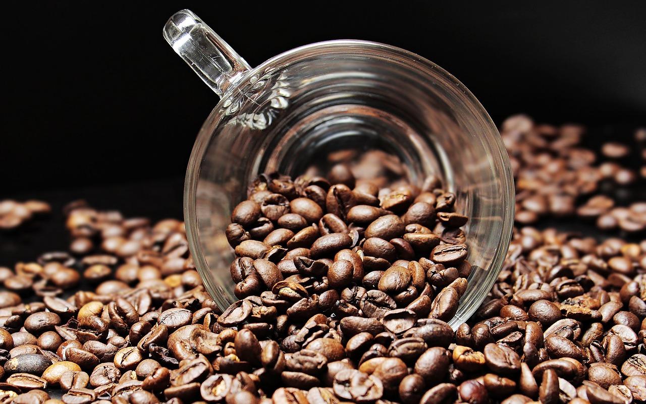 Hoe selecteer je de beste koffiebonen?